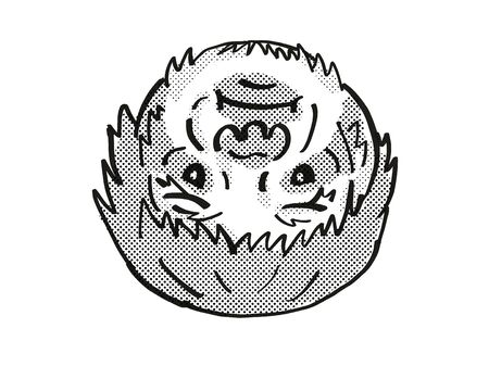 Retro cartoon mono line style drawing of head of a Sloth, arboreal mammal and an endangered wildlife species on isolated white background done in black and white.