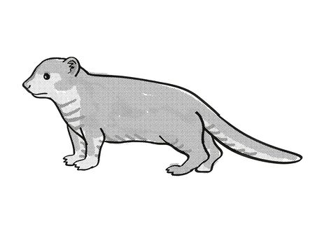 Retro cartoon mono line style drawing of a Mongoose or Helogale Parvula, an endangered wildlife species on isolated white background done in black and white full body. 版權商用圖片