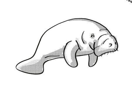 Retro cartoon mono line style drawing of a Manatee or sea cow, a large  aquatic herbivorous marine mammal and endangered wildlife species on isolated white background done black and white full body. Stockfoto