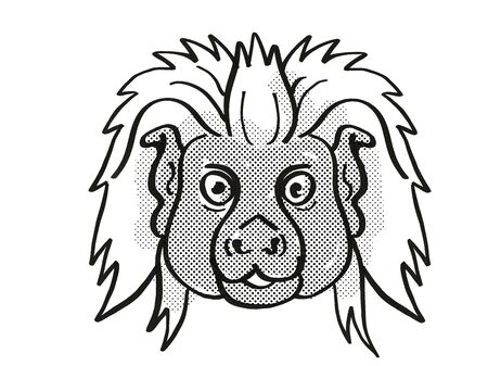 Retro cartoon mono line style drawing of head of a Cottontop tamarin, a small monkey species found in South America, an endangered wildlife species on isolated white background done in black and white.