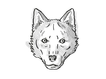 Retro cartoon style drawing of head of a Red Wolf , an endangered wildlife species on isolated white background done in black and white.