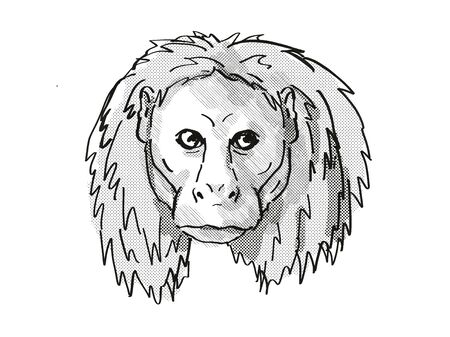 Retro cartoon style drawing of head of an Uakari, a small species of monkey, native to South America and an endangered wildlife species on isolated white  background done in black and white.