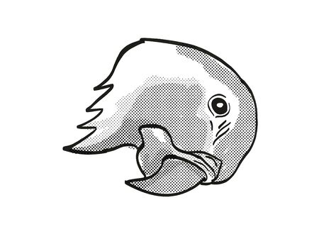 Retro cartoon mono line style drawing of head of a blue-throated macaw or Waglers macaw, an endangered wildlife species on isolated white background done in black and white.