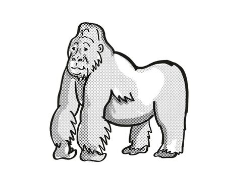 Retro cartoon mono line style drawing of a mountain silver back gorilla, an endangered wildlife species on isolated white background done in black and white full body.