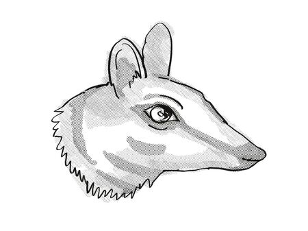 Retro cartoon style drawing of head of a Numbat, a small-sized marsupial found in Western Australia and an endangered wildlife species on isolated white background done in black and white. 版權商用圖片