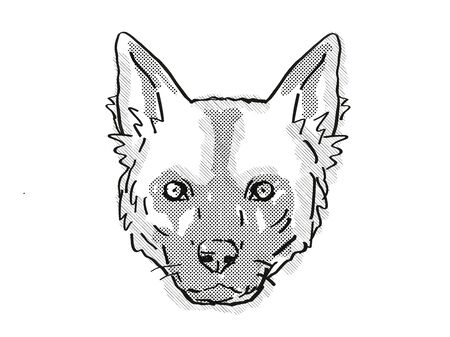 Retro cartoon style drawing of head of an African Wild dog or Lycaon pictus , an endangered wildlife species on isolated white background done in black and white.