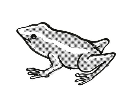 Retro cartoon mono line style drawing of a Monte Iberia Eleuth frog or Eleutherodactylus Iberia, an endangered wildlife species on isolated white background done in black and white full body.