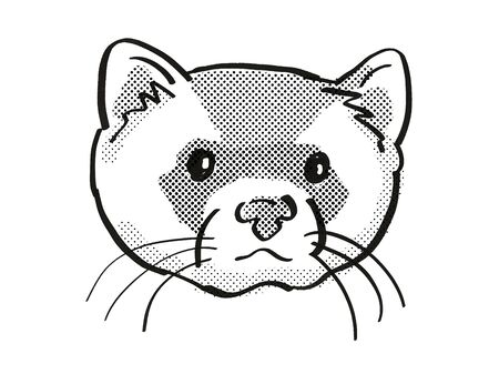 Retro cartoon mono line style drawing of head of a black-footed ferret, American polecat or prairie dog hunter and an endangered wildlife species on isolated white background done in black and white. 스톡 콘텐츠