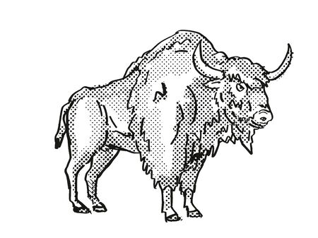Retro cartoon style drawing of an Ancient Bison, an extinct North American wildlife species on isolated background done in black and white full body.