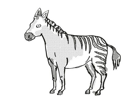 Retro cartoon style drawing of a Hagerman Horse, an extinct North American wildlife species on isolated background done in black and white full body.