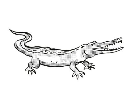 Retro cartoon line drawing style drawing of a West African Slender Snouted Crocodile, an endangered wildlife species on isolated background done in black and white full body. Stock Photo