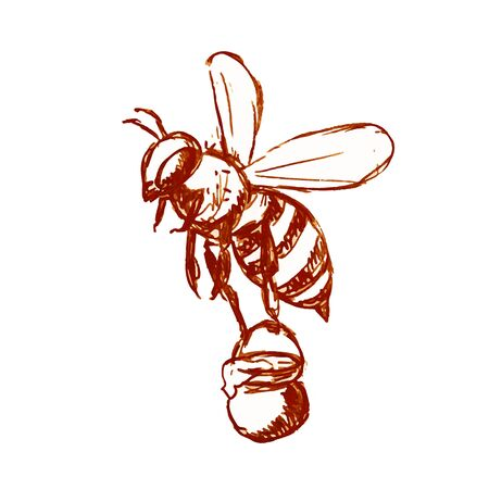 Drawing sketch style illustration of honey bee carrying a pail of honey flying done in black and white on isolated background.