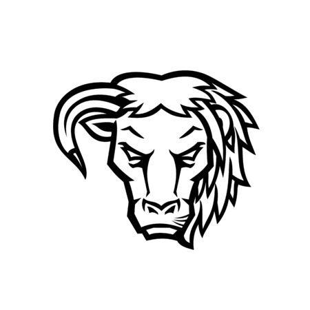 Mascot icon illustration of head of a half bull half lion viewed from front on isolated background in Black and White retro style.