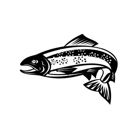 Retro woodcut style illustration of a Brown trout or speckled trout Fish Jumping on isolated background done in black and white.