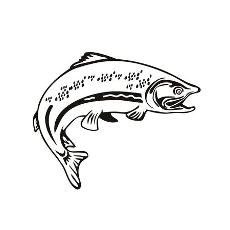 Retro style illustration of a Spotted Trout Fish Jumping on isolated background done in black and white.