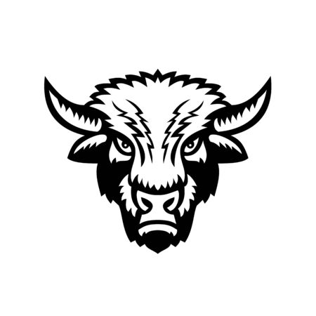 Mascot icon illustration of an American bison or American buffalo viewed from front on isolated background in retro black and white style. Vectores