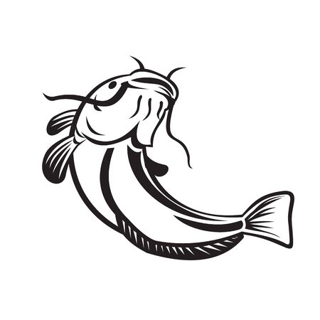 Illustration of a European catfish, Wels catfish or sheatfish, a ray-finned fish with prominent barbels, swimming or going up on isolated white background done in retro black and white style. Illustration
