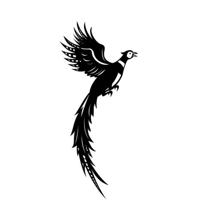 Black and white illustration of a silhouette of a common pheasant or ring-necked pheasant flying up viewed from side on isolated white background done in retro woodcut style.