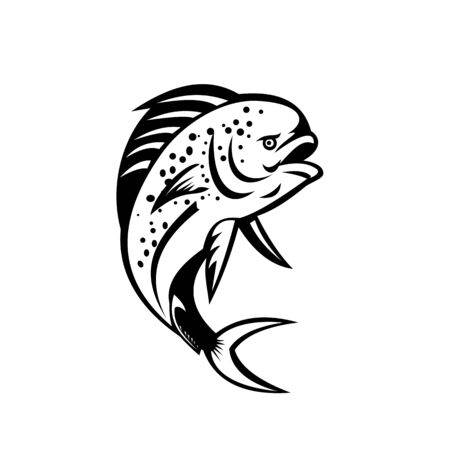 Retro style illustration of a pompano dolphinfish (Coryphaena equiselis), a surface-dwelling ray-finned fish, jumping up done in black and white on isolated background. Vectores