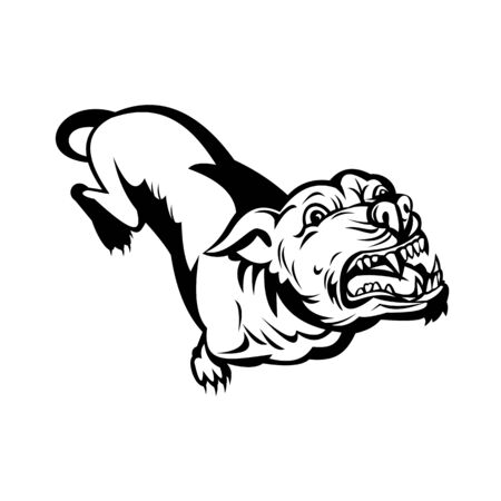 Retro style illustration of a Pit bull or pitbull, a common name for a type of dog descended from bulldogs and terriers,angry and  barking on isolated background done in black and white.