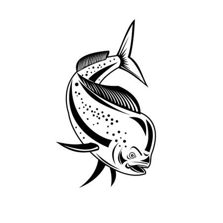 Retro style illustration of a mahi-mahi, dorado or common dolphinfish (Coryphaena hippurus), a surface-dwelling ray-finned fish, diving down done in black and white on isolated background. Illusztráció