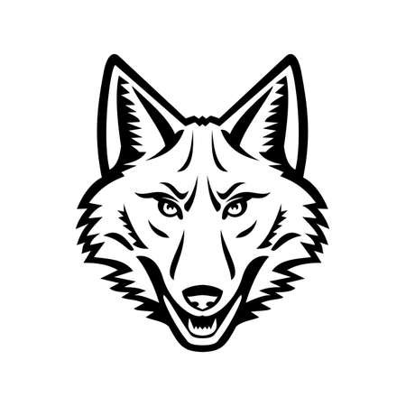 Black and white mascot illustration of head of a coyote or Canis latrans, a canine native to North America viewed from the front on isolated background in retro style.