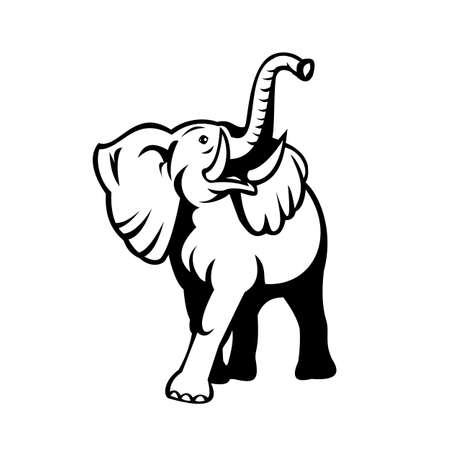 Black and white retro mascot style illustration of an elephant with long tusks looking up viewed from front on isolated white background. Illusztráció