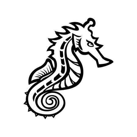 Black and white illustration of a seahorse, sea-horse or sea horse, a small marine fish in the genus Hippocampus viewed from side on isolated background in retro style.