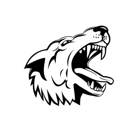 Sports mascot illustration of head of an aggressive and angry wolf, canis lupus, gray wolf or grey wolf, a large canine native to North America low angle view in black and white retro style.