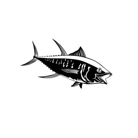 Retro style illustration of a yellowfin tuna thunnus albacares or ahi, a species of tuna found in pelagic waters of tropical and subtropical oceans on isolated background done in black and white. Векторная Иллюстрация