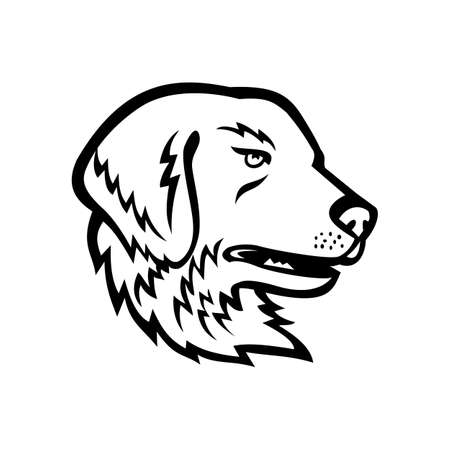Mascot illustration of head of a Great Pyrenees or Pyrenean Mountain Dog, a large breed of dog used as a livestock guardian dog viewed from side on isolated background in retro black and white style. Illustration