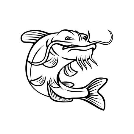 Cartoon style illustration of a channel catfish Ictalurus punctatus or channel cat, North America's most numerous catfish species, jumping up on isolated white background done in black and white.