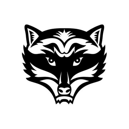 Mascot black and white illustration of head of an angry North American raccoon, northern raccoon, or racoon viewed from front on isolated background in retro style.