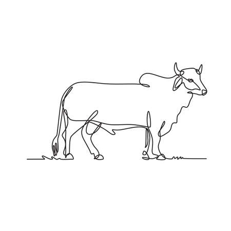 Continuous line drawing illustration of a Brahman bull, an American breed of zebuine beef cattle viewed from side done in sketch or doodle black and white style.