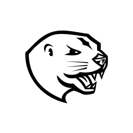 Mascot illustration of head of an angry North American river otter, the northern river otter or the common otter, a semiaquatic mammal side view isolated background in retro black and white style. 向量圖像