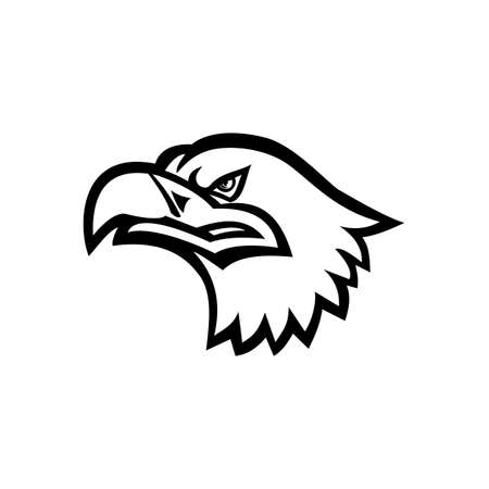 Mascot black and white illustration of head of a Eurasian sea eagle, also known as gray sea eagle, white-tailed eagle, ern or erne viewed from side on isolated background in retro style.