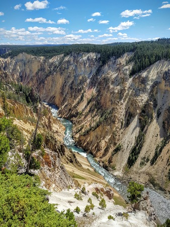 Grand Canyon of Yellowstone 스톡 콘텐츠