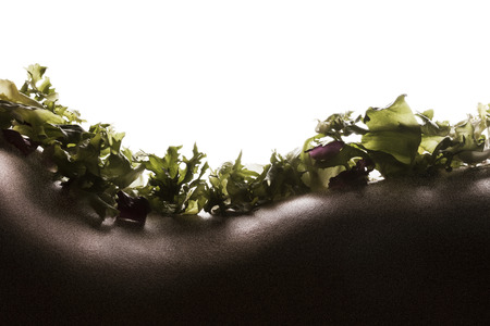bodyscape: Bodyscape with salad on woman back