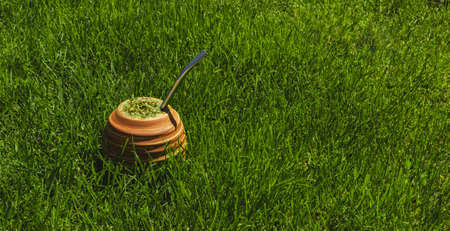 Yerba Mate tea on the grass. On a sunny day. Natural healthy drink. Green, fresh and refreshing. To drink in nature.