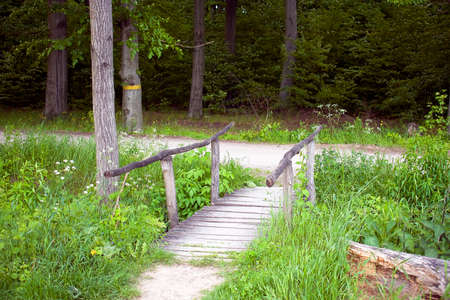 A forest road across a wooden bridge Archivio Fotografico