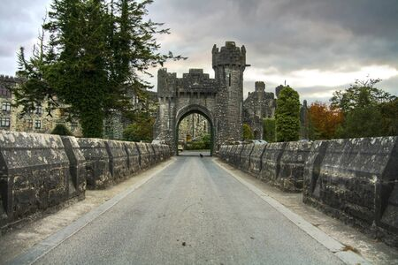 downcast: Welcome to Ashford Castle, Ireland
