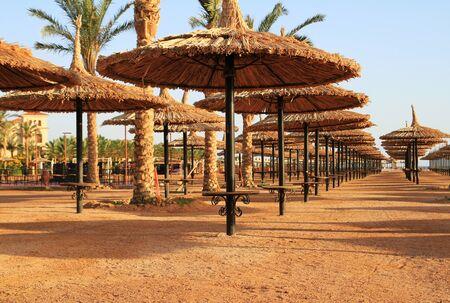parasols: Beach parasols in Egypt