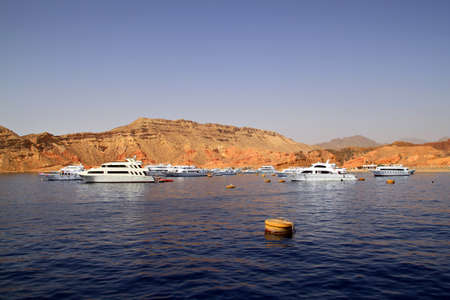 sharm el sheikh: Boats in harbor on the Red Sea,Sharm el Sheikh,Egypt