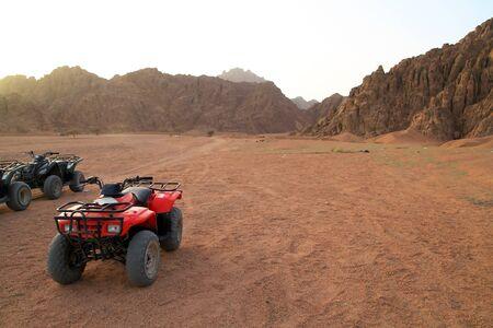 Quads in Sinai mountains
