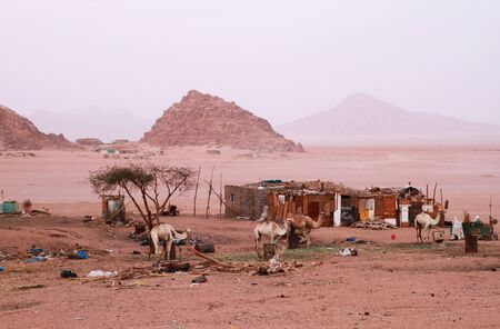 bedouin: Poor Bedouin village in Sinai mountains