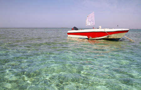 red sea: Motorboat in the Red Sea
