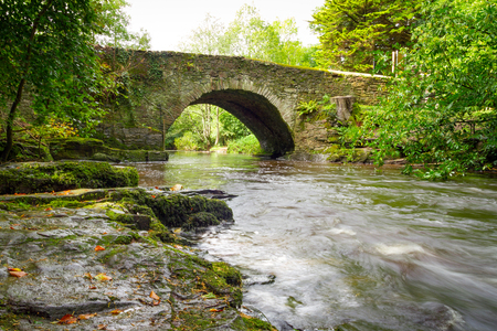 Beautiful creek of Clare Glens,Co. Limerick,Ireland Stock Photo