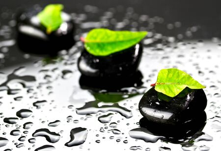 black stones: Black spa stones with green leaf and water drops Stock Photo