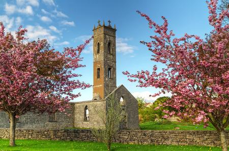 ancient ireland celtic cross: Old Irish Abbey with blossom trees