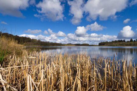 idyllic: Idyllic summer Irish lake